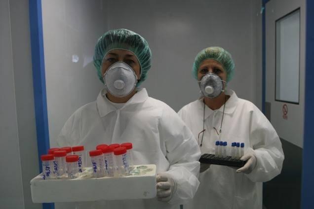 gripa-porcina-nou-358534b93f_86034000