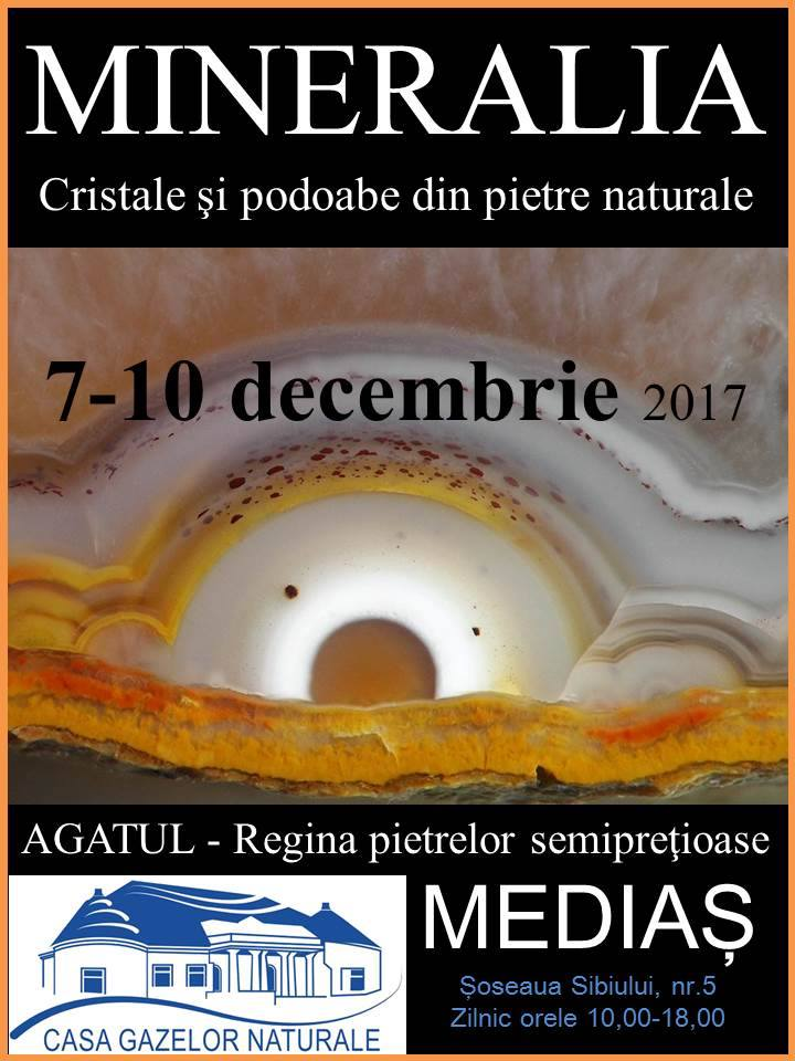 Mineralia expozitie la Medias